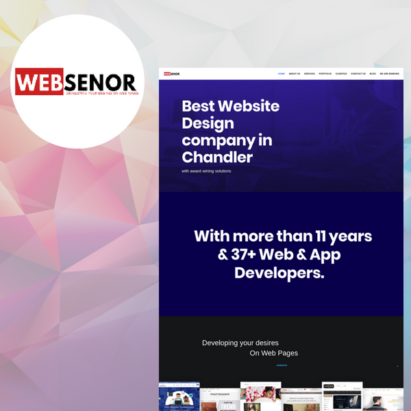 websenor llc